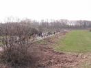 24.03.2012 - 26. Sandhofer Straßenlauf